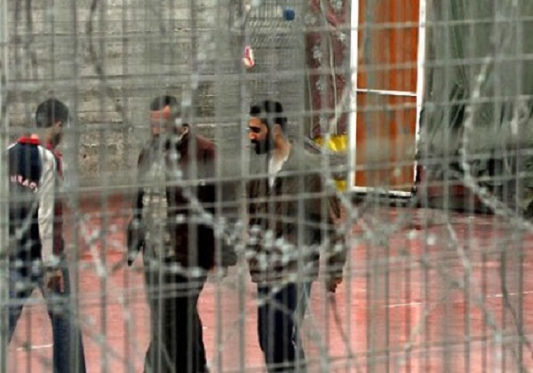 Tahanan Palestina @InfoPalestina